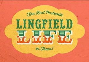 lingfield.business.park.image.2015