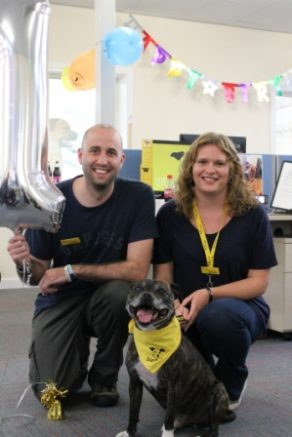 dogs.trust.image.oct.2015