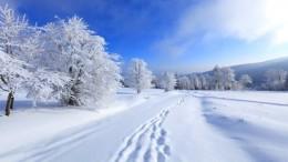 winter.image.nov.2016