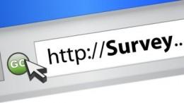 survey.image.jan.2016