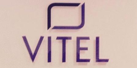 vitel.logo.jan.2016